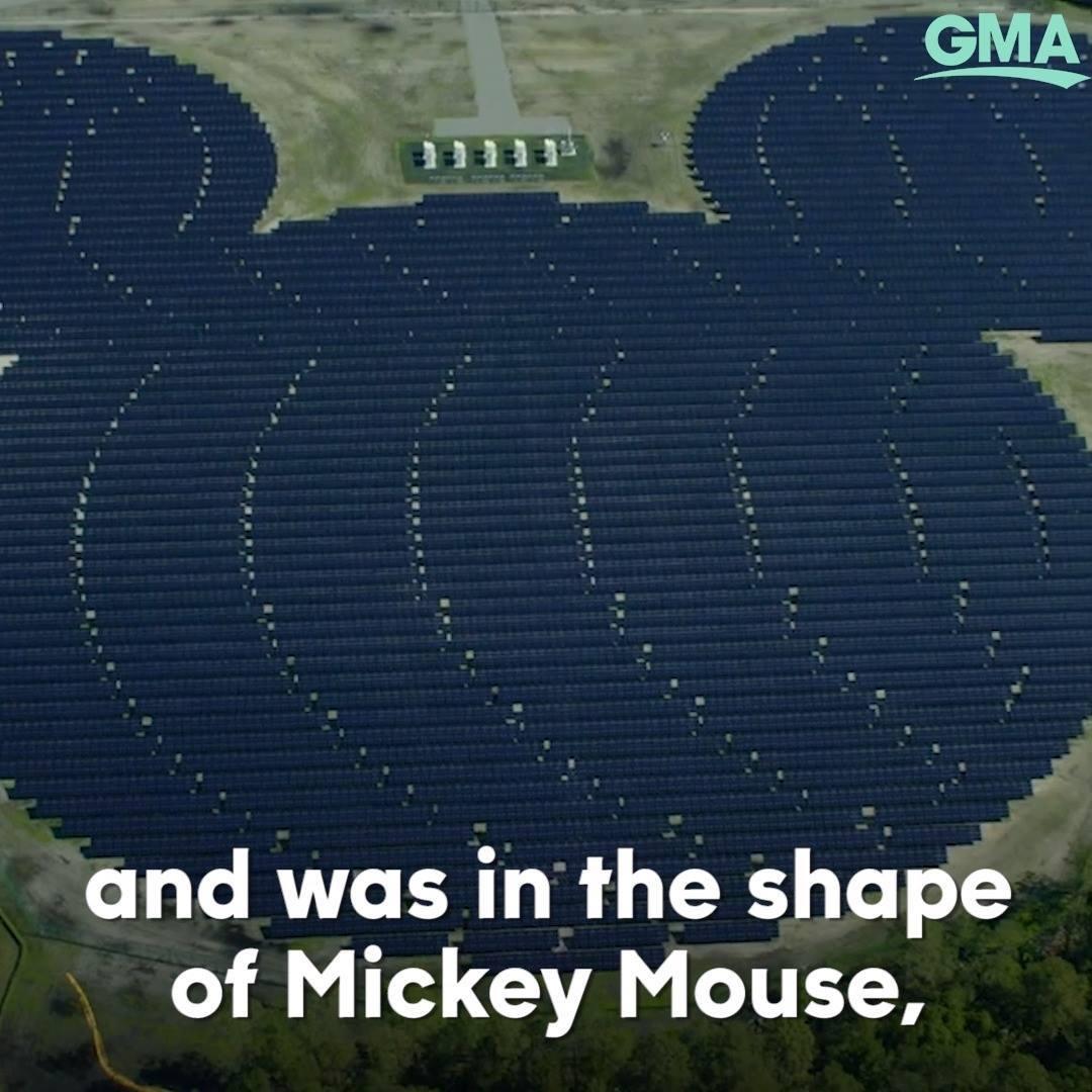 Photo of Disney's Mickey Mouse solar array