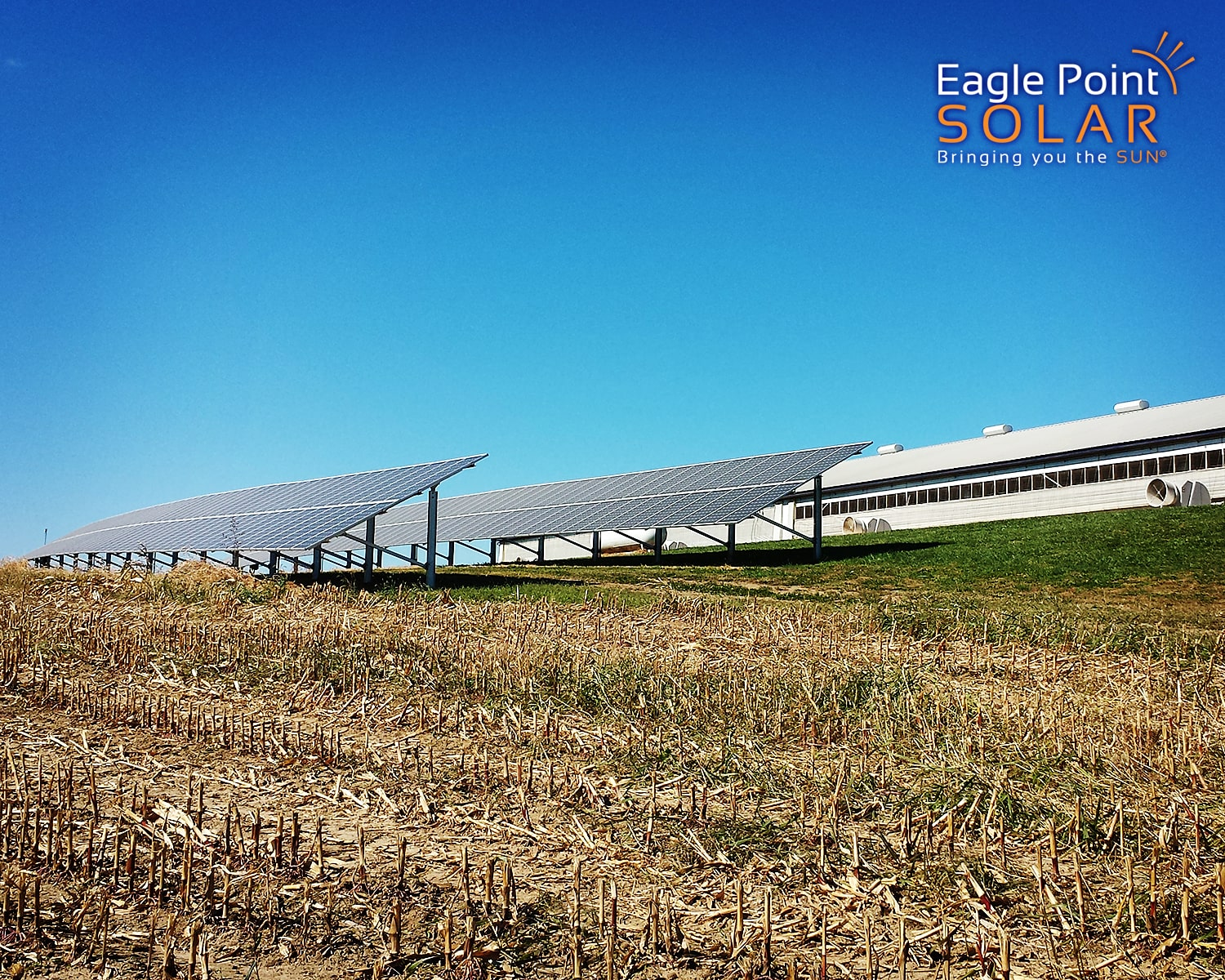 Photo of Demmer Family Farms ground mounted solar array