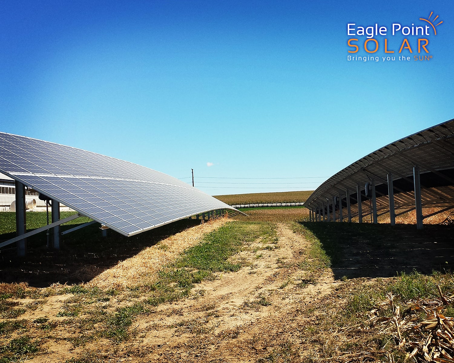 Close up photo of Demmer Family Farms ground mounted solar array